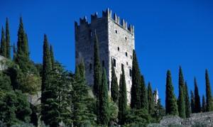 Torre fra i cipressi