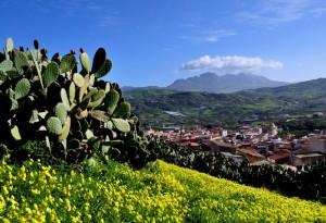 Misilmeri, colori di Sicilia!