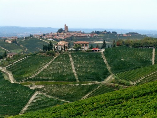 Serralunga d'Alba - Panorama di Serralunga