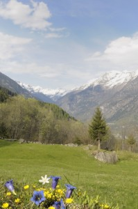Primavera in valle Antigorio