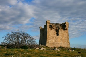 torre burraco