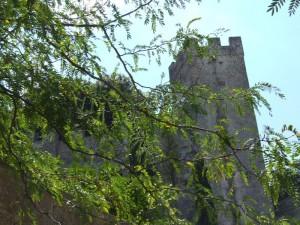 tra foglie,ed alberi,ah il castello di Oria
