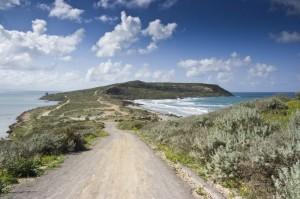Macchia mediterranea nella Penisola del Sinis