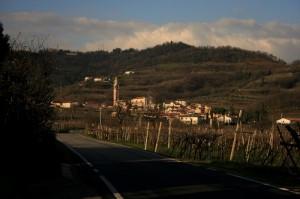 Selva di Montebello