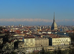 Gru a Torino