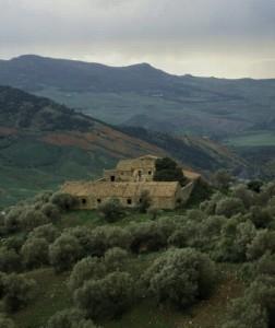 Panorama con masseria nel territorio di Scillato