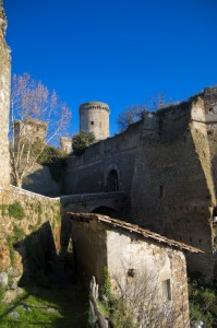 Mura del Castello Borgia