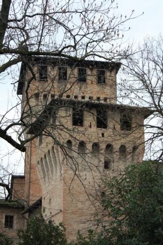 Montecchio Emilia - Dove ti nascondi... Meno male che in inverno cadono le foglie...