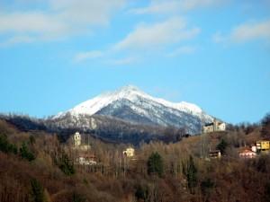 frazione Foresto