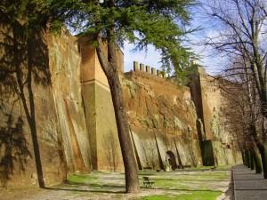 Le mura e il loro amico verde