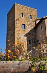 Castello de' Turriani o Torre dei Milanesi (3)
