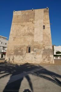 All'ombra della palma, Torre di Campomarino