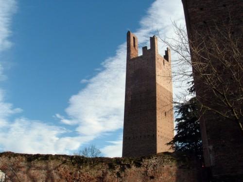 Rovigo - la torre Donà