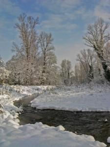 Parco del Crostolo dopo la nevicata