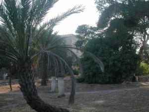 Castello di donnafugata il giardino