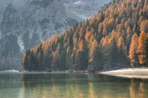 Il lago di Braies, uno specchio per i larici autunnali….