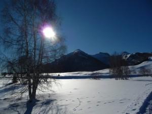 Le Viote (monte Bondone)