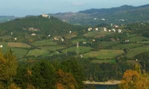 Vedo Vigo