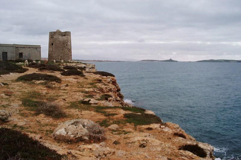 ''Turre e Seu, la torre costiera.'' - Cabras