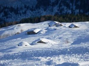 Sepolti dalla neve