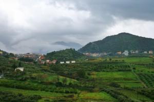 la valle verde di  rodì