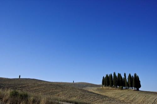 San Quirico d'Orcia - I Cipressi