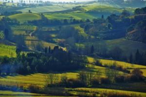 Le colline pisane