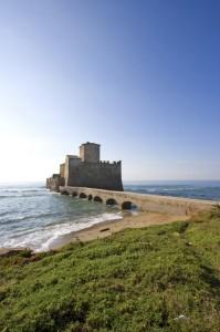 L'erba, il mare e Torre Astura