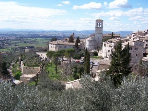 Assisi Ulivi e Pace