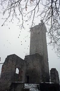 Castello di Visone