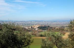 Veduta di Deruta tra gli olivi