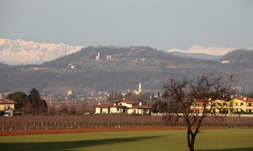 Cormons - terra di vino