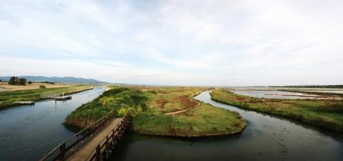 Castiglione della Pescaia - la maremma da la casa ximenes
