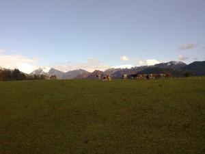 Monte Pora