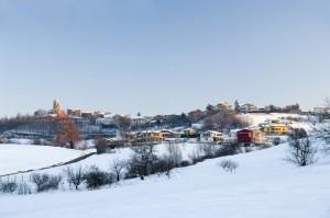 Gavazzana invernale