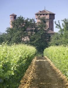 Castello di Francavilla Bisio con vigna