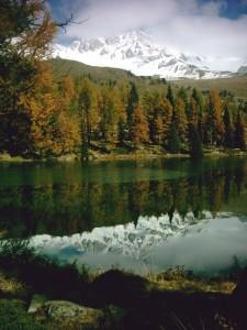 Un autunno colorato e freddo