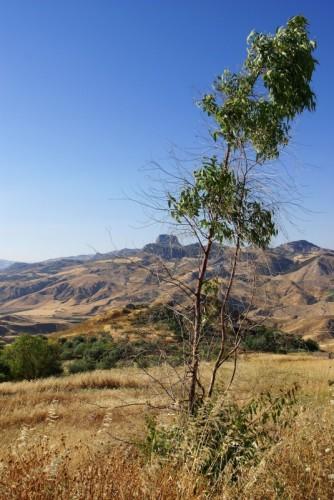 Milena - MILENA vista SCIANNIRU e monte San Paolino