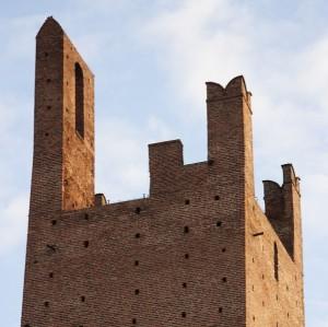 Torre Donà: I Merli