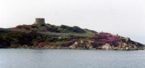 Torre aragonese nella natura rosa