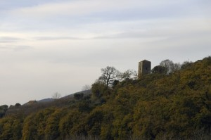 torre piccionaia 1 - Lauro