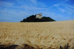 castello Pellegrino