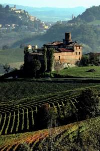 Pinot….una Volta a Barolo…
