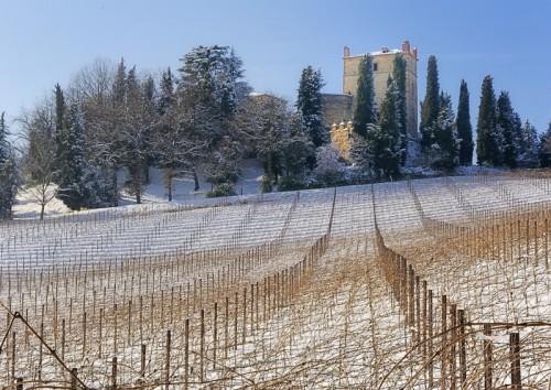 """Castello di Serravalle - Langhe """"bolognesi"""""""