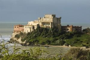 Castello di Falconara e le spine