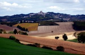 Monferrato landscape