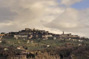 Paliano - Terra di oliveti e di vigne
