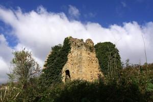 Tra steppe e rovi, ciò che rimane del Castello