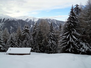 Panorama dall'Alpe di Luson