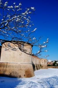 Fiocchi di neve sulla Rocca